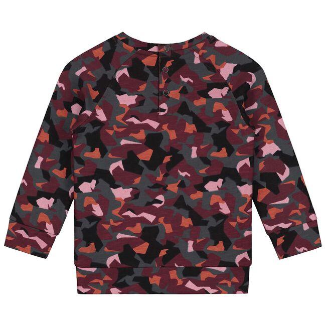 Prénatal baby jongens sweater - Multi