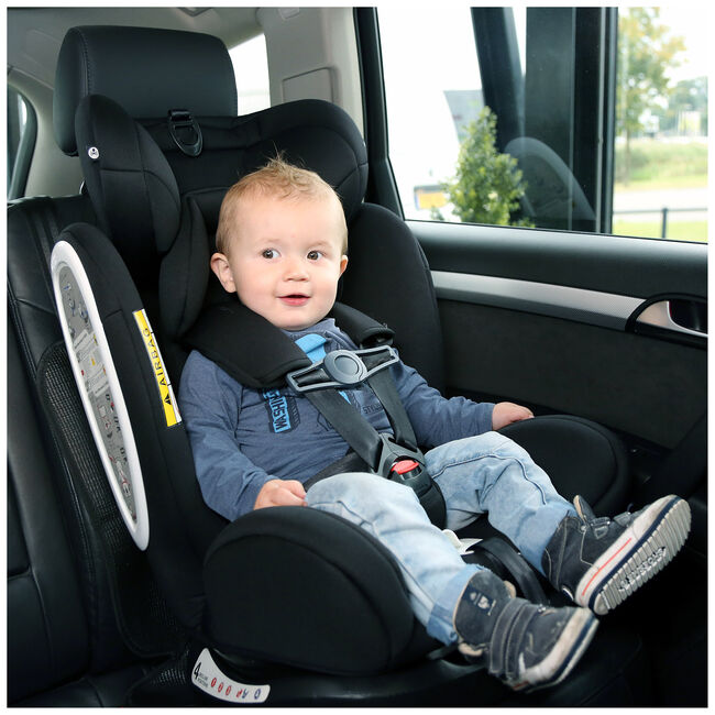 A3 autostoelgordel veiligheidsclip -