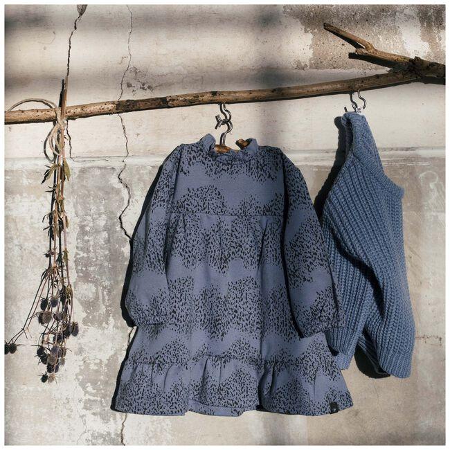 Sweet Petit baby meisjes jurk Fayenne - Blue Grey