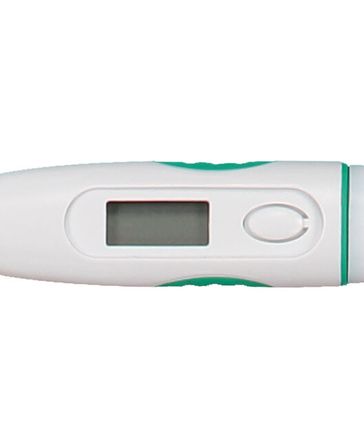 Prénatal digitale thermometer - Mintgreen