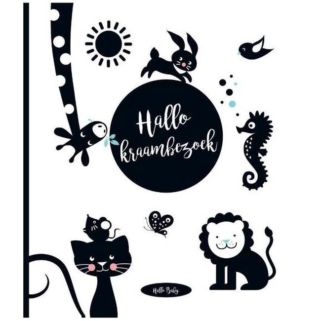 Hello Baby Hallo! Kraambezoek - Multi