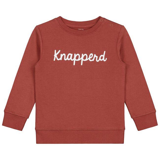 Prénatal baby jongens sweater - Dark Brown Red