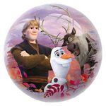 Frozen bal 14 -