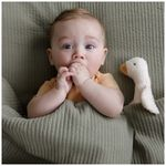 Little Dutch piepgans Little Goose -