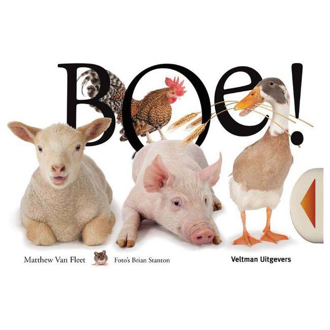 BOE! - Multi