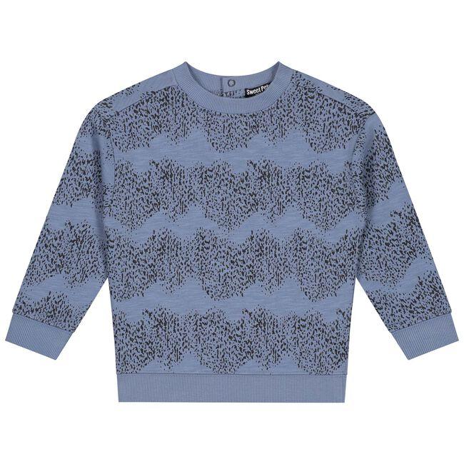 Sweet Petit baby jongens sweater Skye -