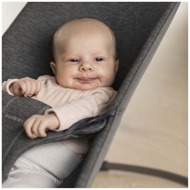 Baby Björn Bliss wipstoel - Darkgrey