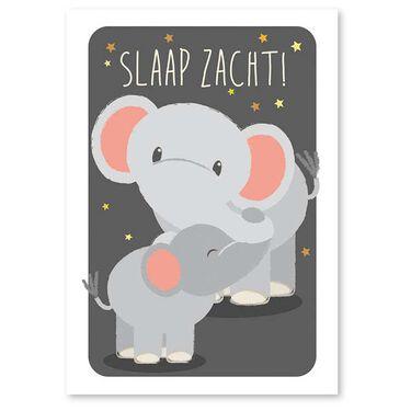 Studio Circus A6 kaart olifant -