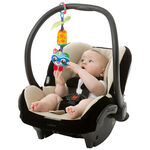 Playgro Cheeky Chime Rocky Racoon -