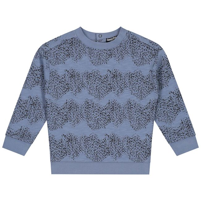 Sweet Petit peuter jongens sweater Skye -
