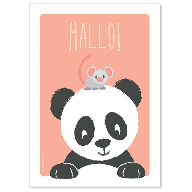 Studio Circus A6 kaart panda hallo - Pinkshade