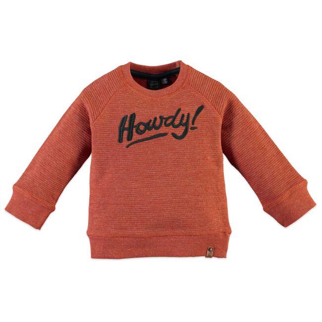 Babyface peuter jongens sweater - Salmon