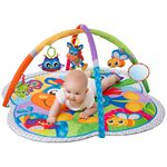 Playgro Clip Clop Activity Gym with Music -