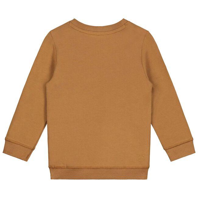 Prénatal peuter jongens sweater - Midbrown